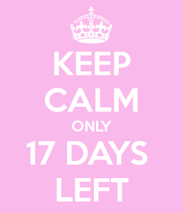 keep-calm-only-17-days-left-3