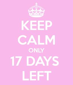 keep-calm-only-17-days-left-3